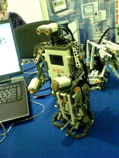codecamp_robik.jpg